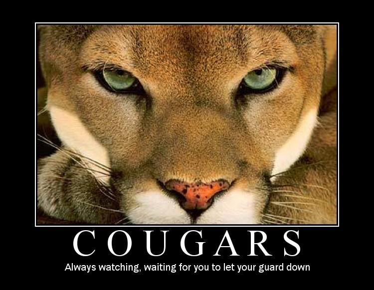 Cooking with Cougars